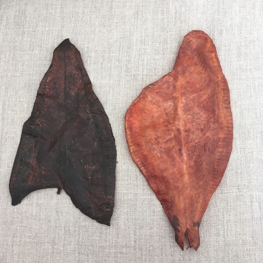 Plaice Fish Leather After Tanning