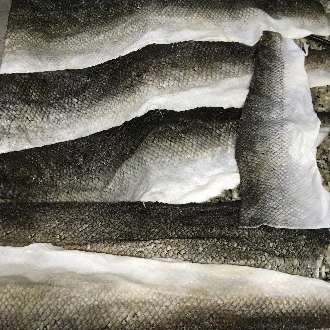 Fish Tanning Blog
